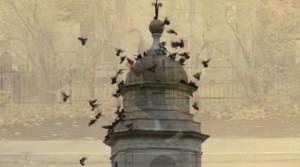 tower & birds w D in background
